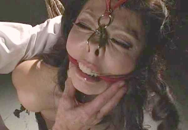 〖SM〗ハード系緊縛!爆乳女を執拗に痛めつける拷問!拘束鼻フックで身動き取れない奴隷を調教!